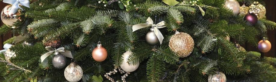 Farms & Estates · Christmas Trees · Property · People · Sporting · News. ••• - Yattendon Christmas Trees - Yattendon