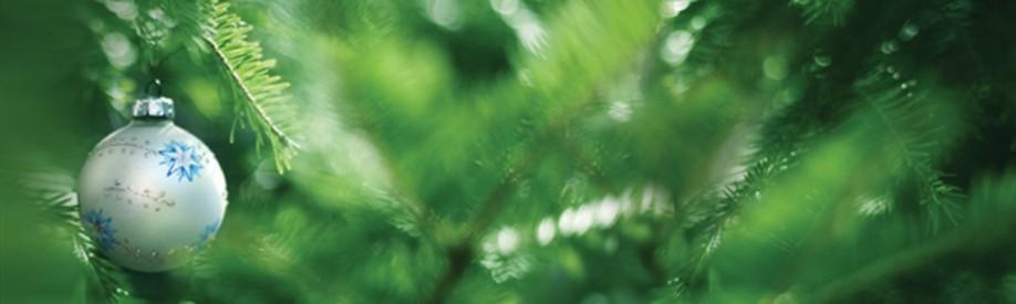 Yattendon Christmas Trees
